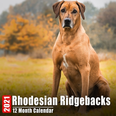 Image for Calendar 2021 Rhodesian Ridgebacks: Cute Rhodesian Ridgeback Photos Monthly Mini Calendar With Inspirational Quotes each Month